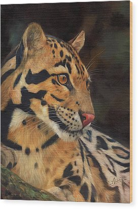 Clouded Leopard Wood Print by David Stribbling
