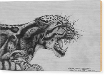 Clouded Leopard Theatened. Wood Print by Ian Cuming