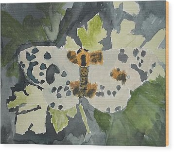 Clouded Magpie Watercolor On Paper Wood Print by William Sahir House