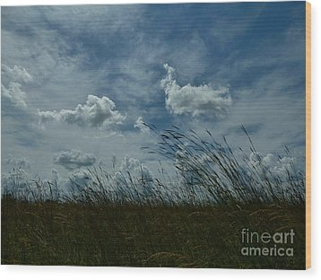 Clouds And Grass Wood Print by Tim Good
