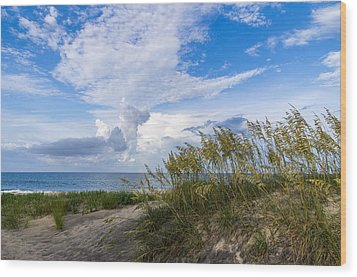 Wood Print featuring the photograph Clouds And Sea Oats by Gregg Southard