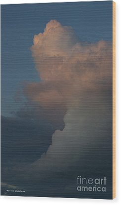 Wood Print featuring the photograph Clouds Meeting by Tannis  Baldwin