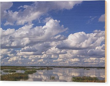 Clouds Over Cheyenne Bottoms Wood Print