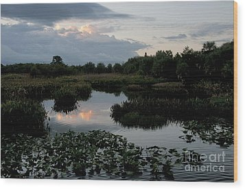 Clouds Over Green Cay Wetlands Wood Print by Mark Newman