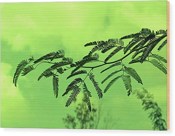 Cloudy Green Nature Wood Print by Deepti Chahar