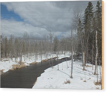 Wood Print featuring the photograph Cloudy Spring Day by Gene Cyr