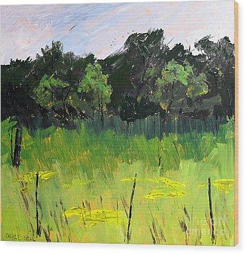 Clusters Of Black-eyed Susans Wood Print by Charlie Spear