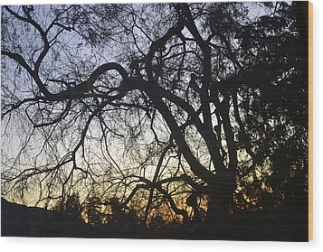 Cluttered Sunrise Wood Print by Kiros Berhane