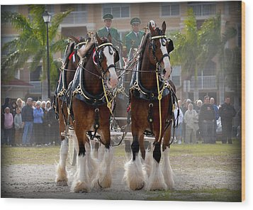 Wood Print featuring the photograph Clydesdales 4 by Amanda Vouglas