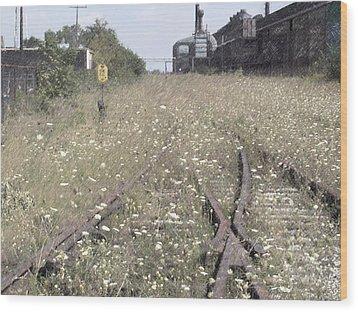 Cn Railroad 1 Wood Print by The Art of Marsha Charlebois