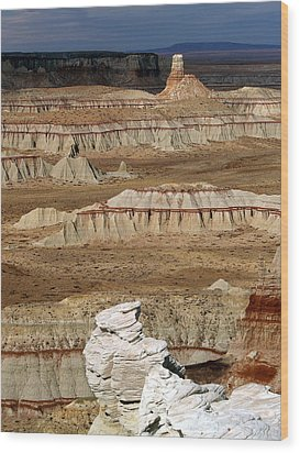 Coal Mine Mesa 19 Wood Print by Jeff Brunton