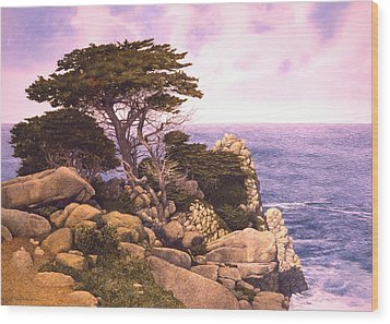 Coast At Lobos Wood Print