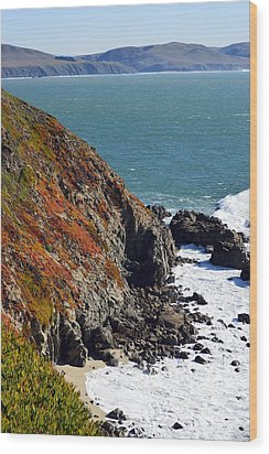 Coast Wood Print by Brent Dolliver