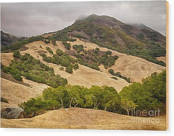 Coast Hills Wood Print by Alice Cahill