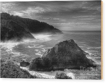 Coast Of Dreams 7 Bw Wood Print by Mel Steinhauer
