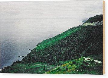 Coast Of Nova Scotia Wood Print by Christy Usilton