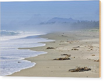Coast Of Pacific Ocean In Canada Wood Print by Elena Elisseeva
