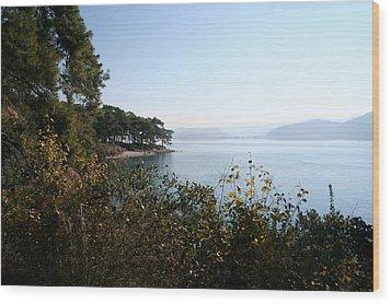 Wood Print featuring the photograph Coast by Tracey Harrington-Simpson