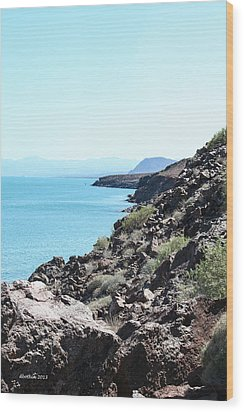 Coastal Baja Wood Print by Dick Botkin