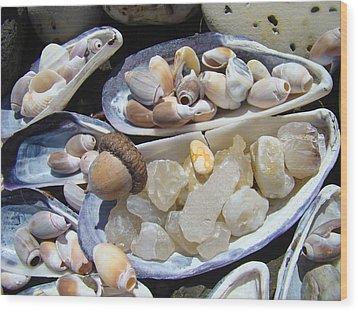 Coastal Beach Art Prints Agates Shells Acorn Wood Print by Baslee Troutman