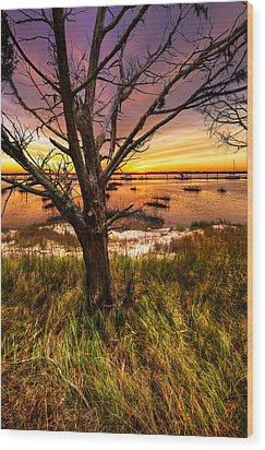 Coastal Harbor Wood Print by Debra and Dave Vanderlaan
