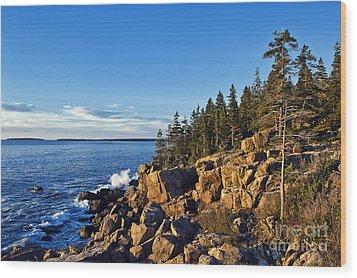 Coastal Maine Landscape. Wood Print by John Greim