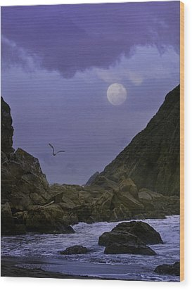 Coastal Moods Moonglo Wood Print