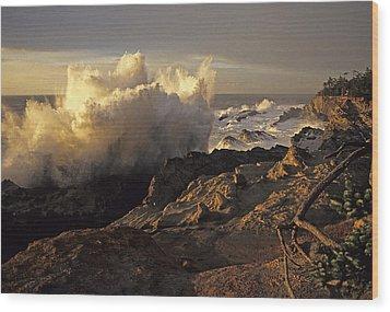 Coastal Storm Wave Wood Print