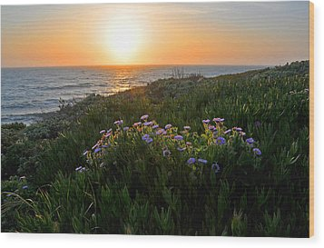 Coastal Sunset Wood Print by Lynn Bauer