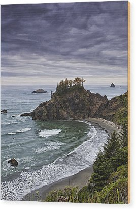 Coastal Views Wood Print by Andrew Soundarajan