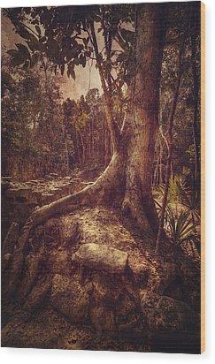 Coba Tree Wood Print by Stuart Deacon