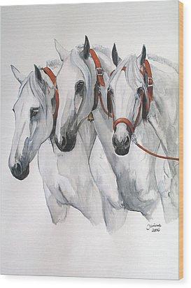 Cobra De Tres Yeguas Wood Print by Janina  Suuronen