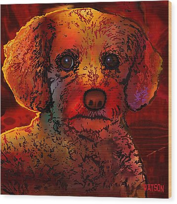 Cockapoo Dog Wood Print by Marlene Watson
