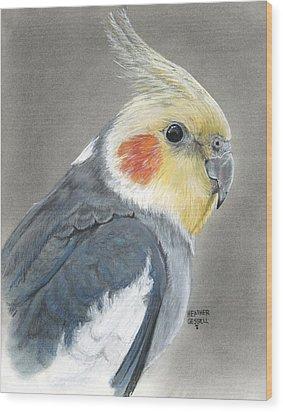 Cockatiel Wood Print by Heather Gessell