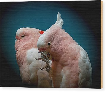 Cockatoos Wood Print by Ernie Echols