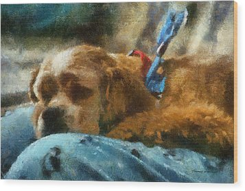 Cocker Spaniel Photo Art 07 Wood Print by Thomas Woolworth