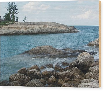 Wood Print featuring the photograph Cococay In The Bahamas by Teresa Schomig