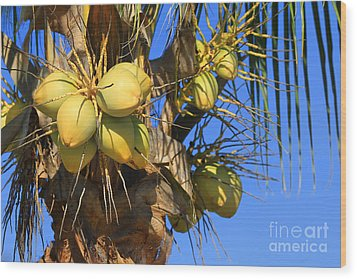 Wood Print featuring the photograph Coconut 2 by Teresa Zieba