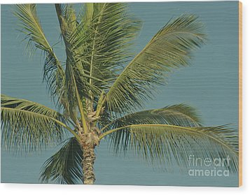 Cocos Nucifera - Niu - Palma - Po'olenalena Beach Maui Hawaii Wood Print by Sharon Mau