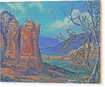 Coffeepot Rock  Wood Print by Gracia  Molloy