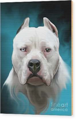 Cold As Ice- Pit Bull By Spano Wood Print by Michael Spano