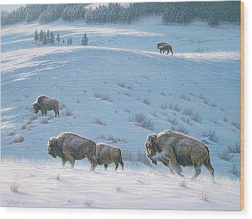 Cold Day At Lamar Wood Print by Paul Krapf