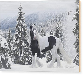 Cold Mountain Wood Print by Terry Kirkland Cook