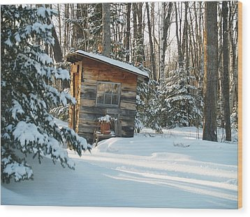 Cold Outlook Wood Print by Susan Crossman Buscho