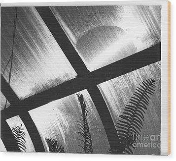 Cold Sun Wood Print by Susan M Fleischer
