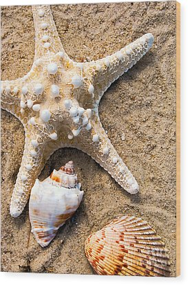 Collecting Shells Wood Print