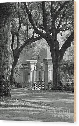 College Of Charleston Gate Wood Print