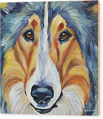 Collie Wood Print by Melissa Smith