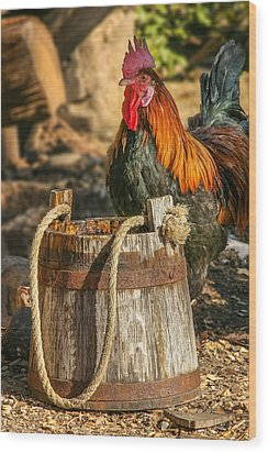 Coloful Rooster 2 Wood Print by Mary Almond