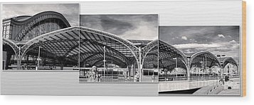 Cologne Central Train Station - Koln Hauptbahnhof - 02- Bw Wood Print by Gregory Dyer